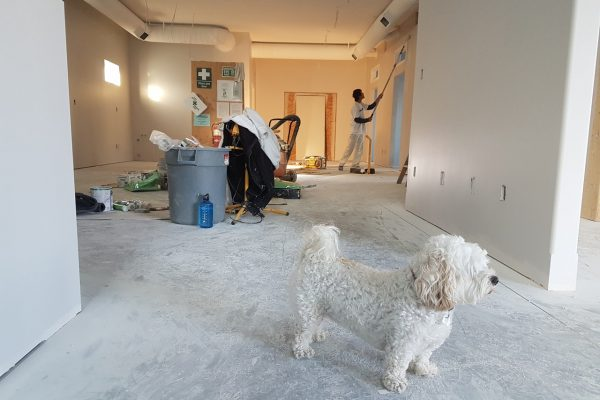 Tips for Removing Caulk from Drywall